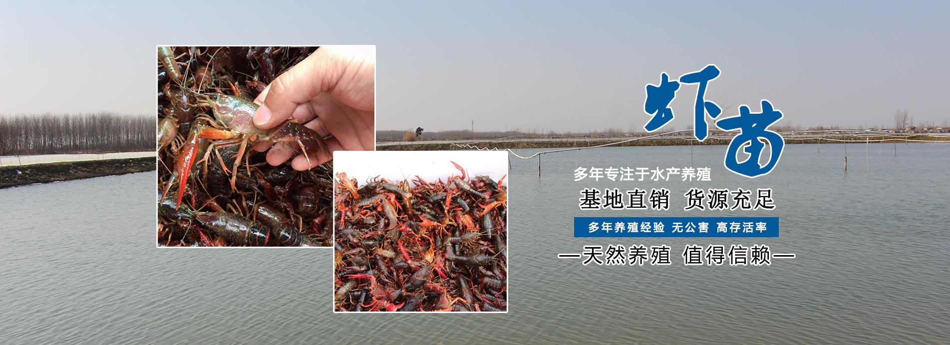 江苏金满池水产品有限公司